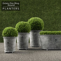 3d max realistic planters ring