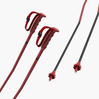 3D ski poles generic