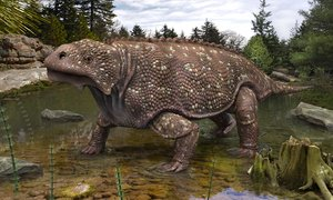 bradysaurus baini 3D model