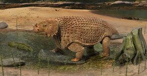 3D scutosaurus karpinskii