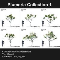 plumeria trees 3D model