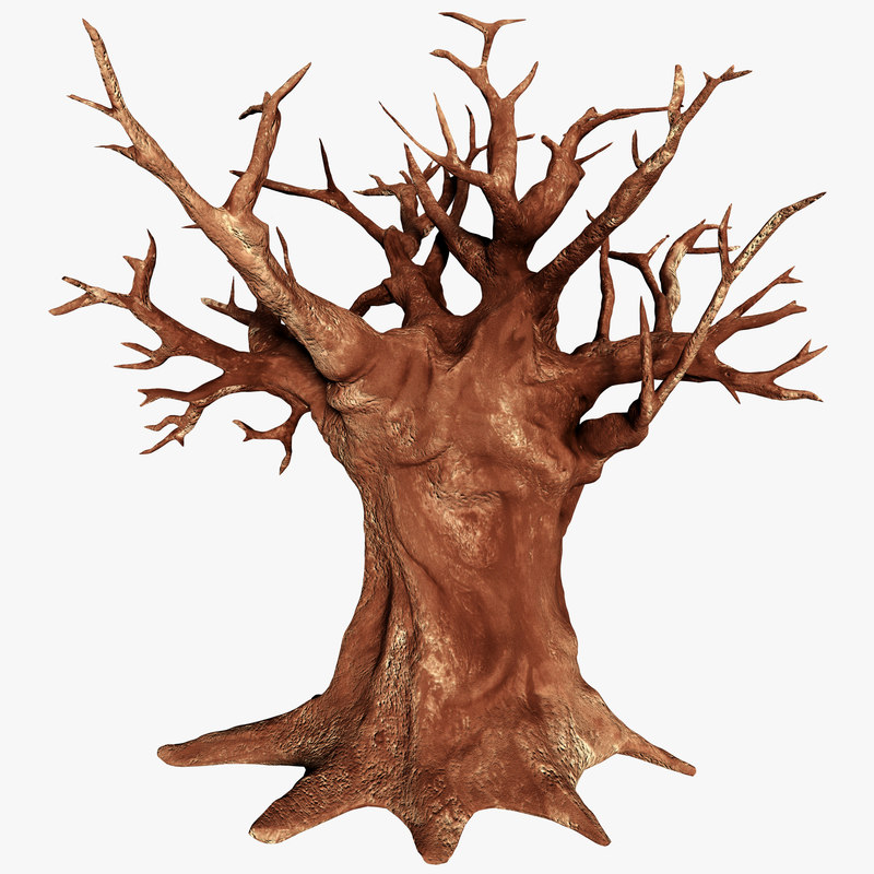 baobab tree animation lod 3D model