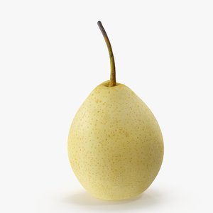 3D pear chinese model