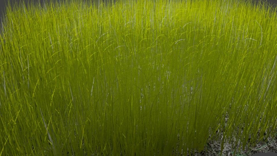 modeled grass 3D model