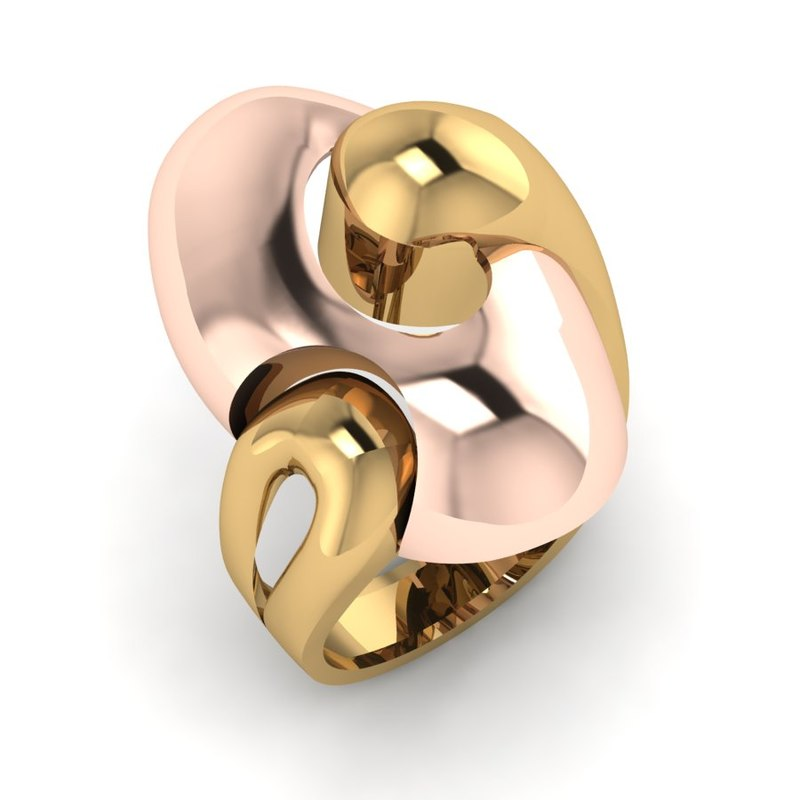 3D 2 pieces ring model