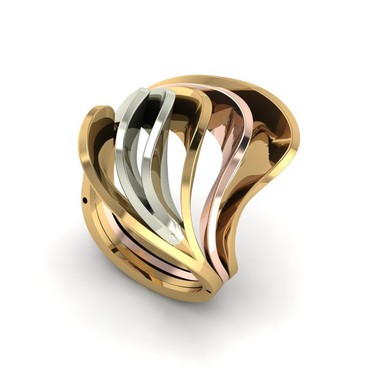 4 pieces ring 3D