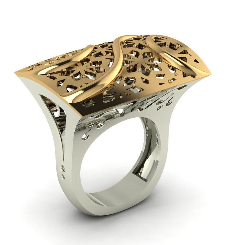 2 pieces ring 3D