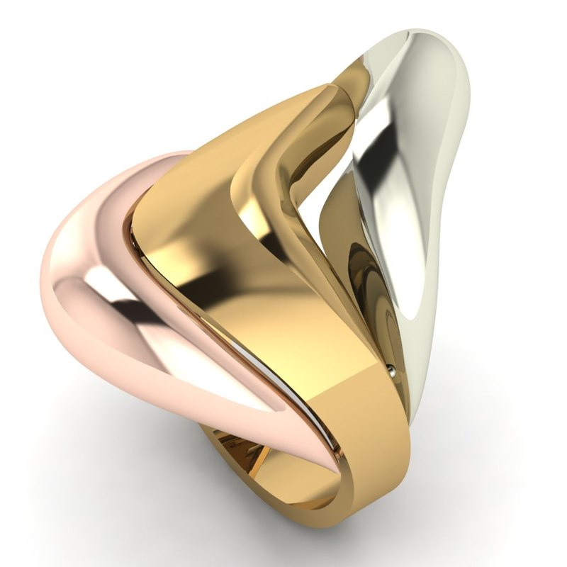 3D 3 pieces ring model