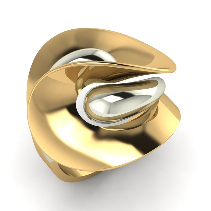 3 pieces ring 3D model