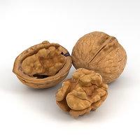 walnut nut 3D model