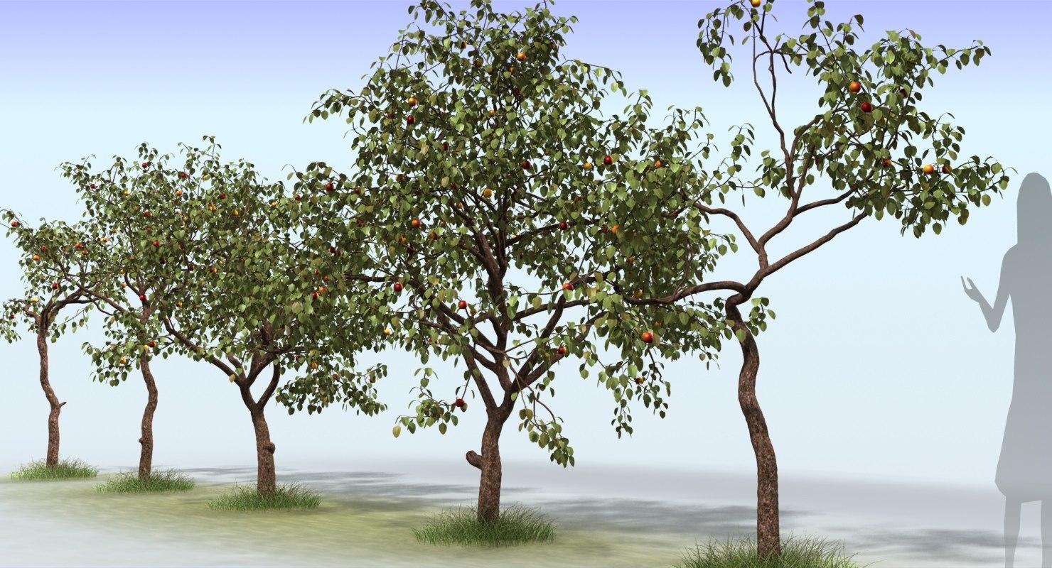 3ds max tree apple