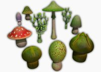 Swamp Fantasy Mushrooms