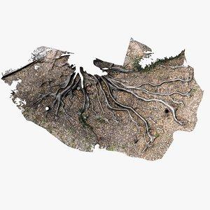 roots parts scans 3D model