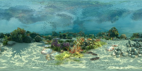 3D ocean floor coral reefs