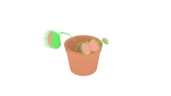 venus fly trap 3D