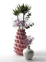 vases echeveria 3D model