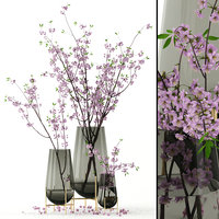 realistic cherry vases blossom 3D model