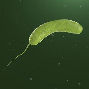 3D cholera