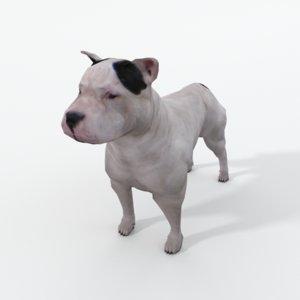 3D pitbull model