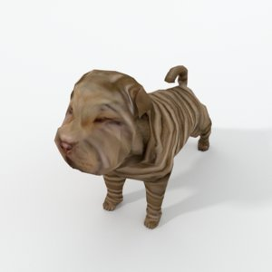 3D shar pei