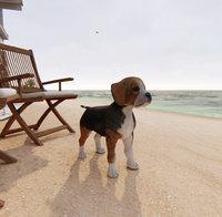 dog beagle model