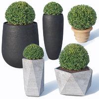 3D bushes pots plants