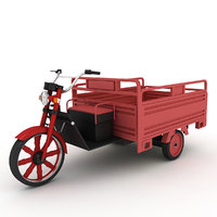 3D tricycle utility electric model