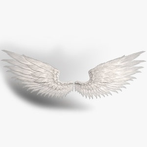 realistic angel wings rigged 3D