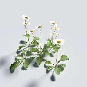 daisy pack 3D model