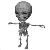 base human skeletonhuman 3D model