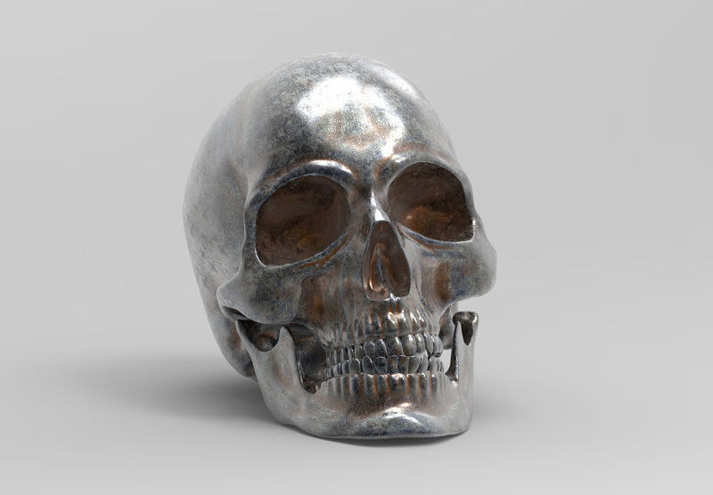 3D model anatomically correct human skull
