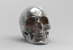 3D model anatomically correct human skull