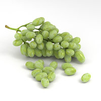 3D grapes green model
