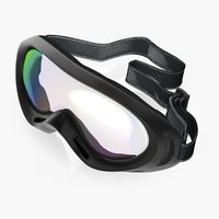 3D model windproof sport glasses skiing