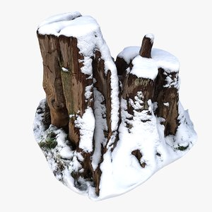 3D stump snow