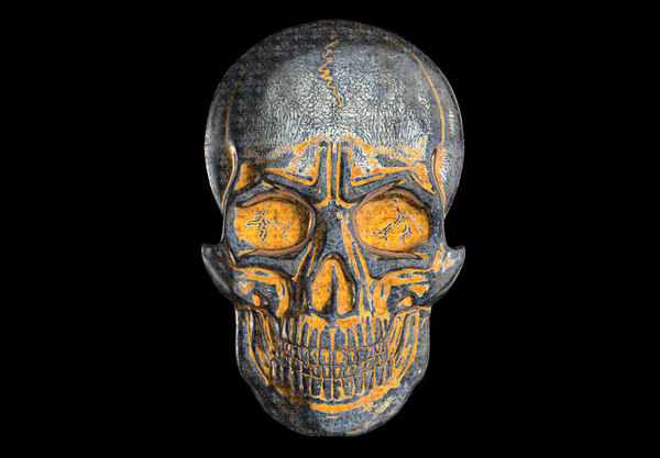 3D model bas-relief anatomically correct skulls