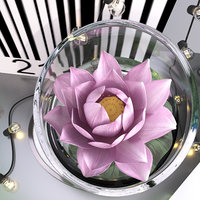 3D pink water lily string