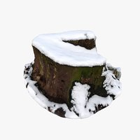 3D stump snow model