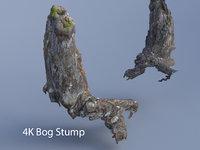 old bog stump 3D