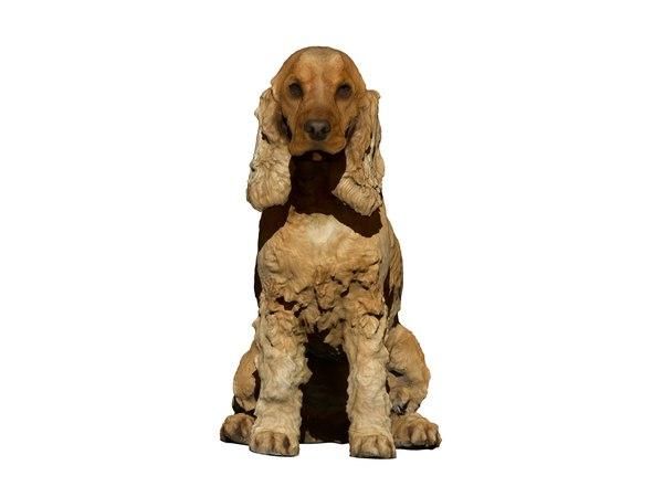 3D photogrammetry dog