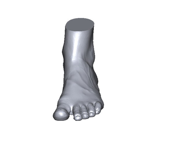 scan foot 3D model