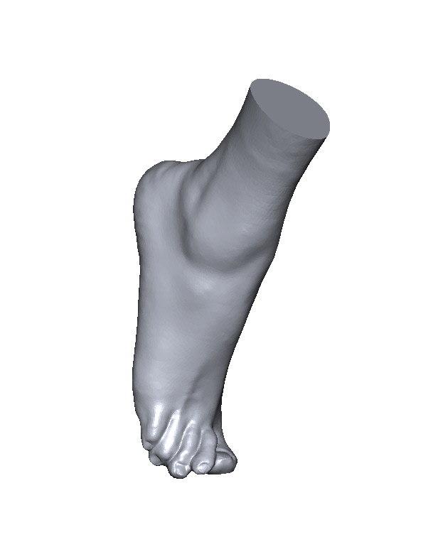 3D scan foot model