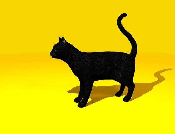 black cat gift animal 3D model