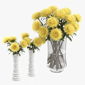 realistic yellow asters 3D model