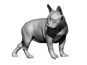 dog scanned photogrammetry 3D model