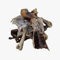 3D chicken bones