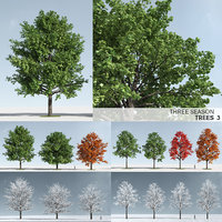 Three Season Trees 3: Maple (+GrowFX)