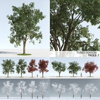 Three Season Trees 7 (+GrowFX)