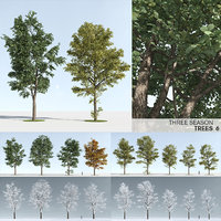 Three Season Trees 6 (+GrowFX)