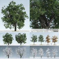 trees model